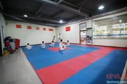 跆拳道系列