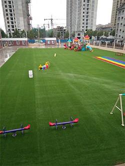 幼儿园绿地草坪